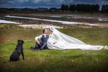 win aktie trouwringen