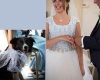 Andre en Herma kochten trouwringen bij trouwringen heusden van juwelier sylvester andriessen